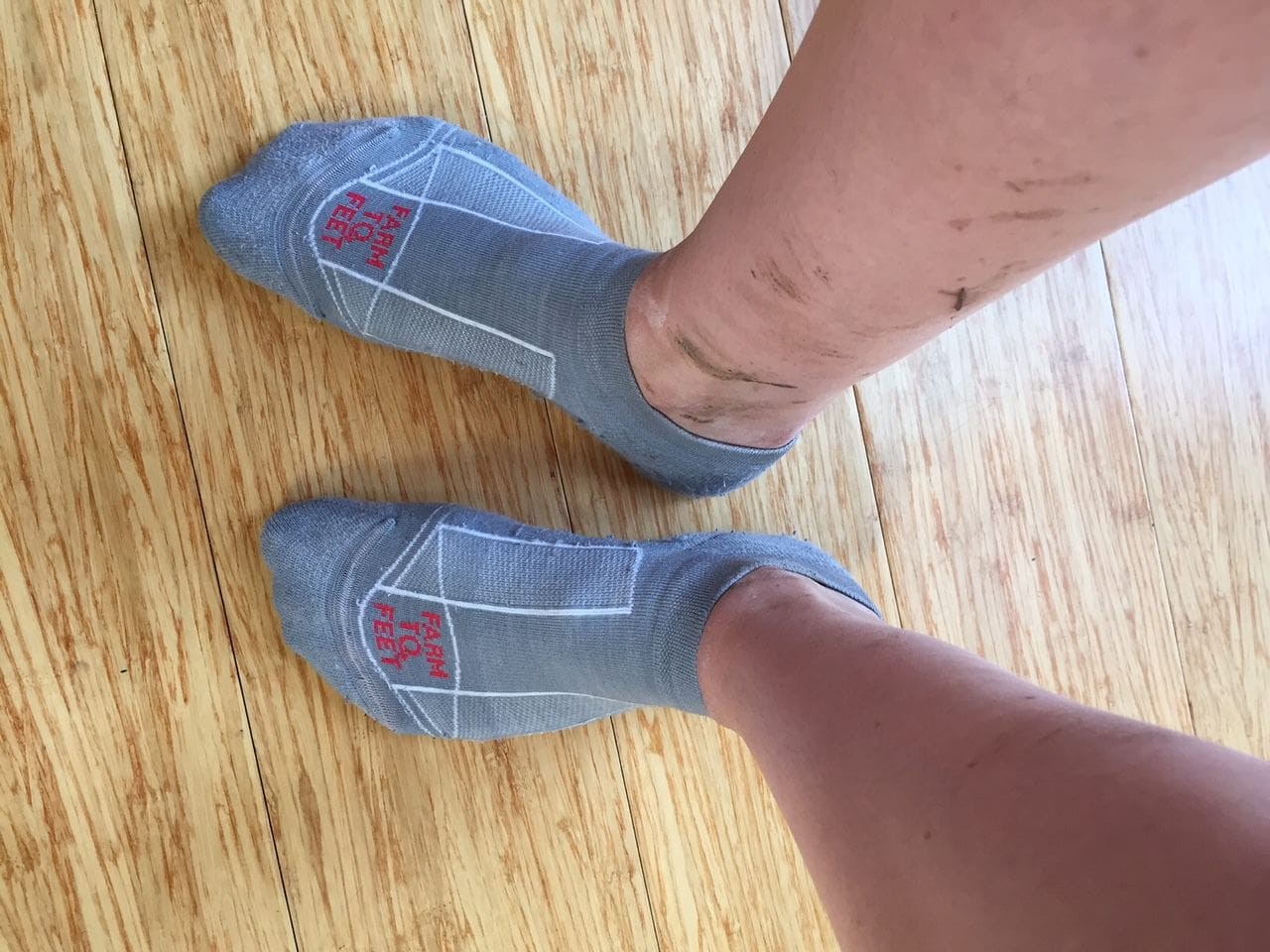 Review Farm to Feet Greensboro Multisport Sock