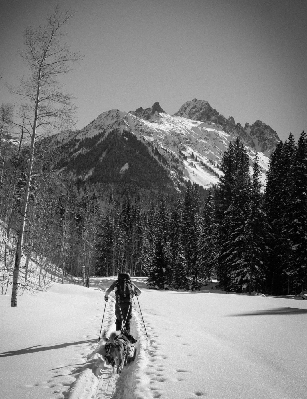 Backcountry Skiing while Pregnant - Gear