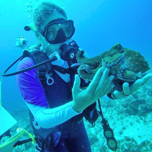 Diving to Preserve Caribbean Ecosystems - Marine Biology