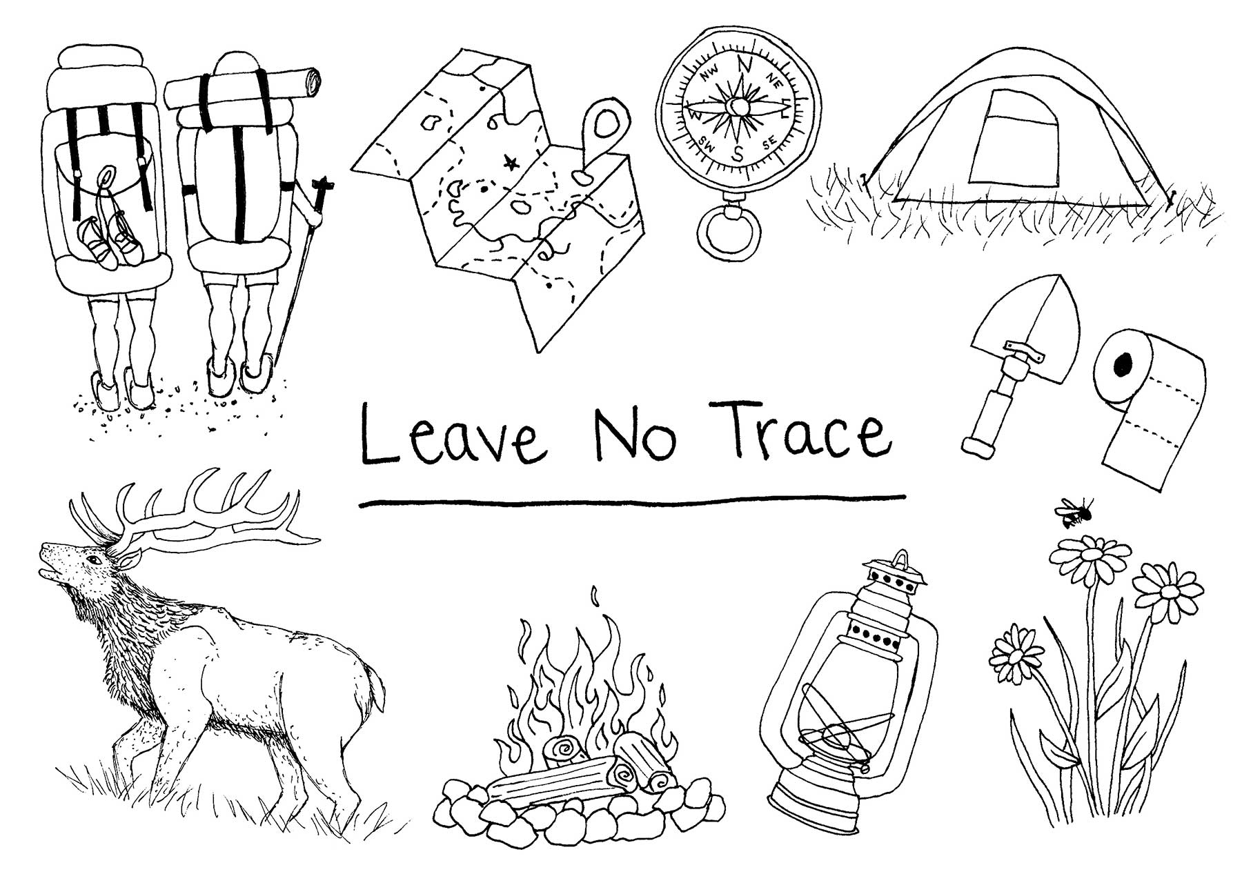 Leave No Trace Dispelling Myths 7 Principles Illustrated