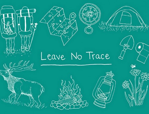 Leave No Trace: Correcting Common Beliefs in the Wild