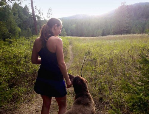 Adventure Partner: The Love and Loss of a Dog