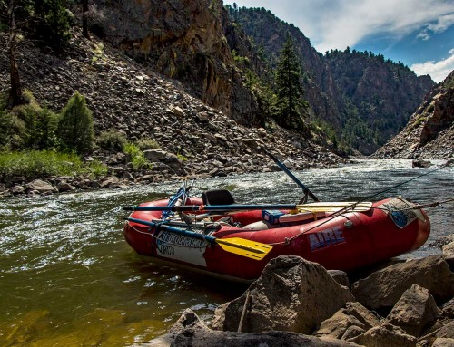 Paddling through Fear: Finding Peace on the River