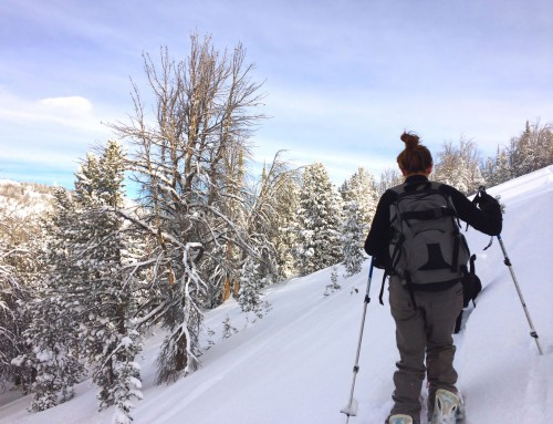 A Remote Winter Life: Lifting Spirits with Splitboarding