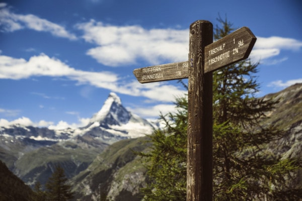 Old, wooden trail signs pointing different directions in the mountains